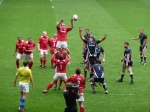 Line Out 2010